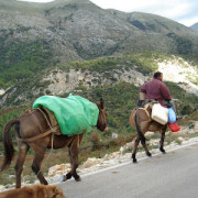 Infotrip AJTR: Albania, Macedonia, Bulgaria