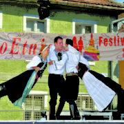 """ProEtnica: """"România – un model pentru protecția minorităților naționale"""""""